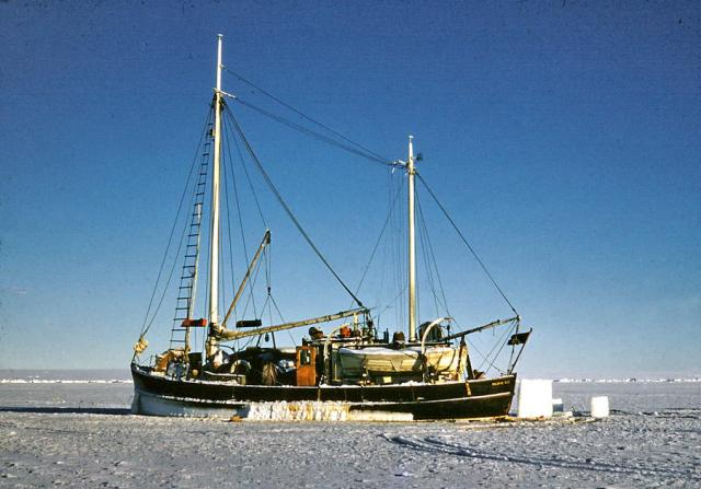 Calanus in 1955, frozen in ice near IgloolIk